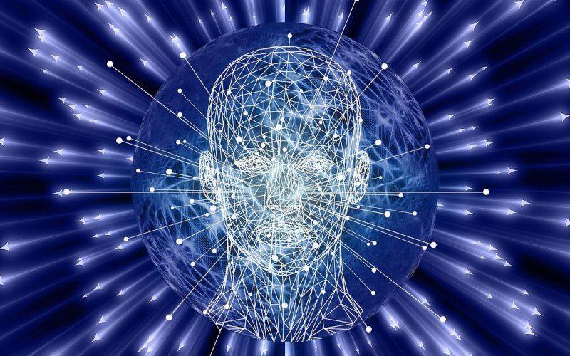 Human Brain – The Wonder Organ